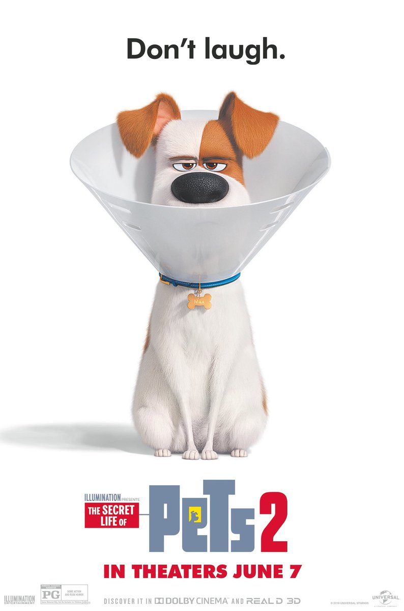 The Secret Life Of Pets 2 Movie Review Movie Review Mom